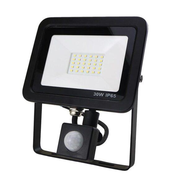 30W LED Floodlight with PIR